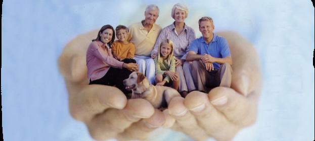Что учитывать при выборе оптимальной накопительной страховки
